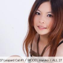No.00307 Leopard Cat #1 緊縛しに縛られて感じてしまう若きヒョウ柄下着の美少女。