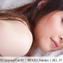 No.00333 Leopard Cat #2 緊縛しに縛られて感じてしまう若きヒョウ柄下着の芸能人美少女。橫顔は綺麗だな。