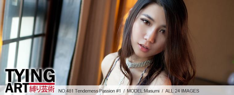 No.00481 Tenderness Passion #1 今日のますみさんは綺麗ですね、セクシービキニ着でいるので緊縛姿を見せだた。後高手小手縛り