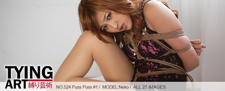 No.00524 Puss Puss #1 [27Pics] 猫樣の女、ワンピパジャマに縄で縛るように誘惑します。乳房縛り、食い込む股縄。
