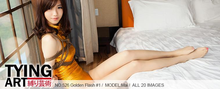 No.00526 Golden Flash #1 [20Pics] 金色のレオタード、パンストをはいて、愛しい笑顔で登場した超美脚、絶世の美貌の持ち主である女M