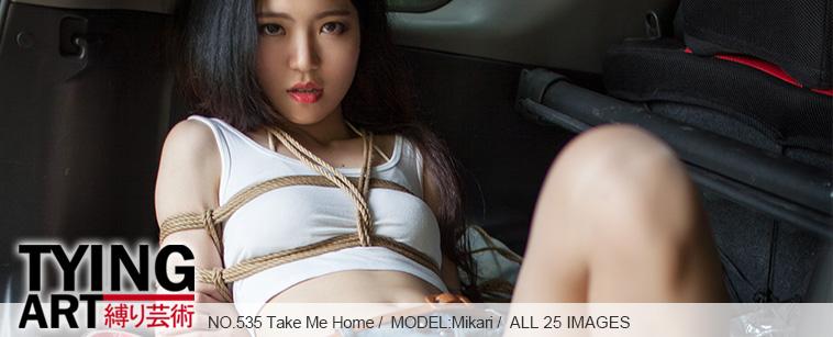 No.00535 Take Me Home [25Pics] 美脚の女の子を縛って、彼女を車の尾箱に入れて、彼女を連れて家に帰ります.後高手小手縛り