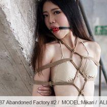 No.00587 Abandoned Factory #2 超美しい脚の女、パンストとビキニ、亀甲縛りと玉口枷猿轡、どのように素晴らしいギャラリーことがあります